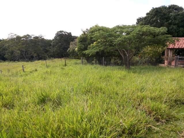 fazenda em Jaraguari com 193 hectares