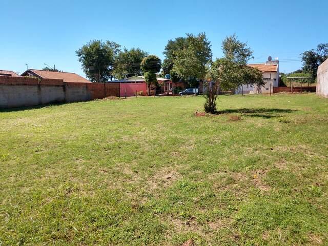 02 Terrenos - 787,5 m² de área total - Jd. Columbia - Asfalto