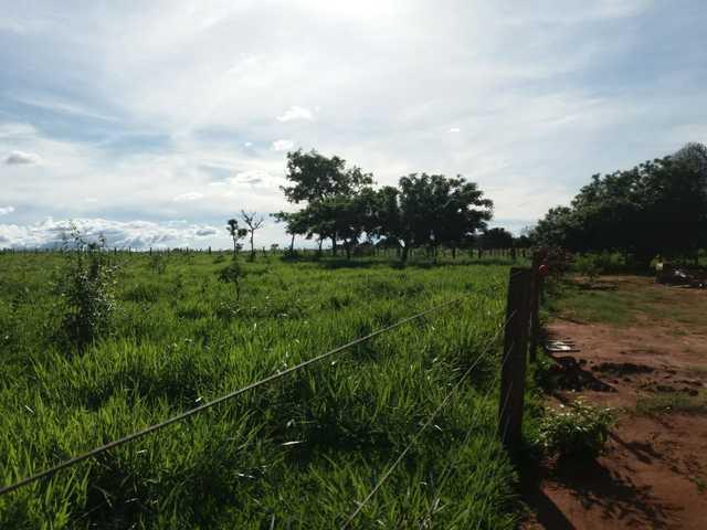 chacara 11 hectare antes de jaraguari
