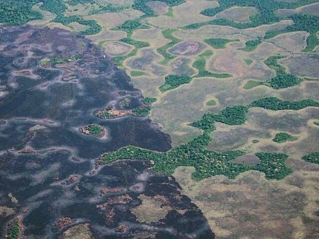 Foto aérea mostra local do parque queimado. (Foto: Imasul)