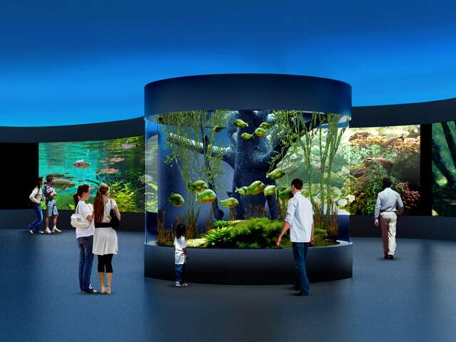 Com padrões internacionais, aquário terá 7 bilhões de litros de água. (Foto: Divulgação)