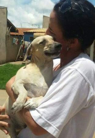 Ana Lúcia Montes com um dos seus 14 cachorros. (Foto: Acervo Pessoal)