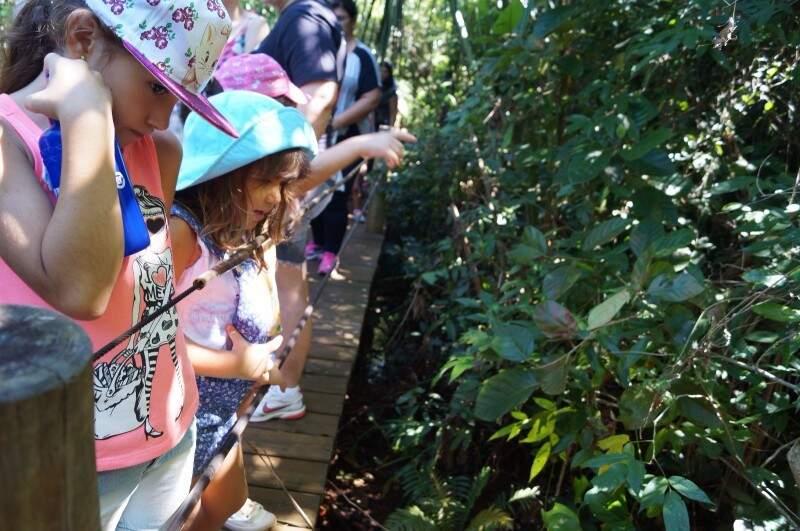 Ludmila e os amiguinhos observando o curso d´água. (Foto: Sirlene Nunes)