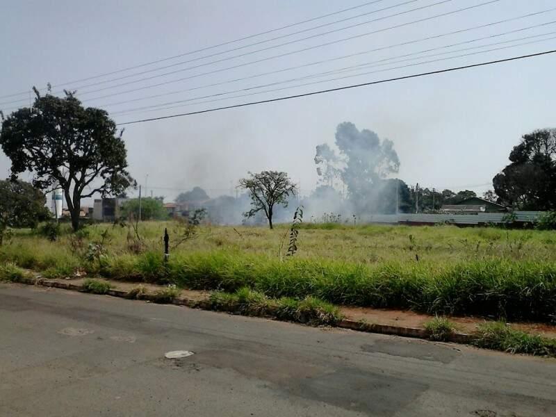O incêndio foi causado por moradores, vizinhos ao local. O fato é recorrente segundo o denunciante.(Foto:Repórter News)