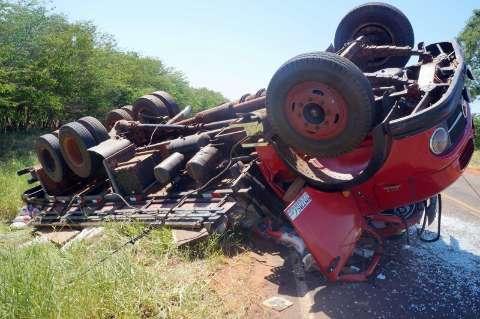 Motorista tenta desviar de tamanduá, mas acaba capotando caminhão