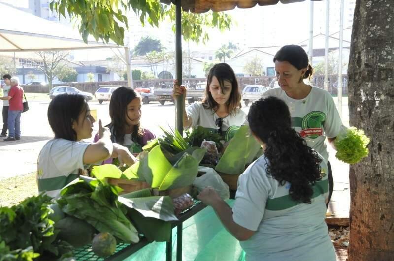 Cerca de 50 famílias produzem os alimentos orgânicos vendidos na feira. (Foto: Marcelo Calazans)