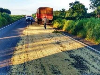 Carregamento de soja cai e interdita MS-267 após pneu de carreta estourar