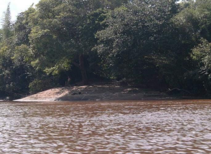 Por causa das chuvas, rio Miranda está cheio e sujo (Foto: Divulgação)