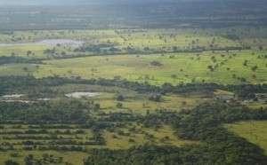 Produtores rurais fizeram o cadastro ambiental de 70% da área de MS