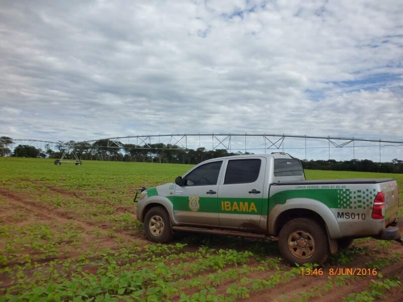 Área desmatada e com plantação de soja irrigada. (Foto: Ibama)