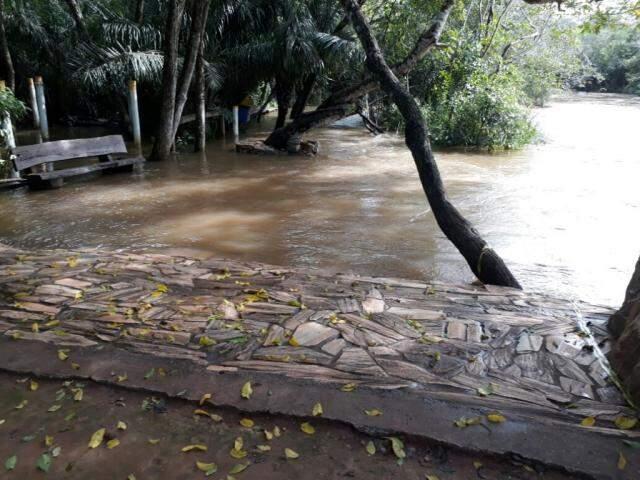 Chuva fez rio Formoso transbordar no Balneário Municipal (Foto: divulgação)