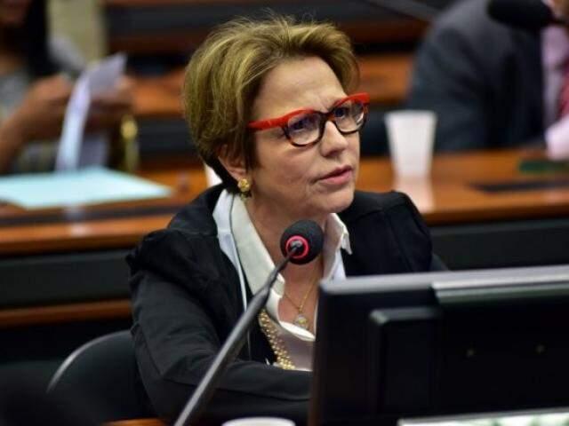 Tereza Cristina recebeu R$ 100 mil via doação direta de siderúrgica acusada de crime ambiental. (Foto: Zeca Ribeiro/Câmara dos Deputados)
