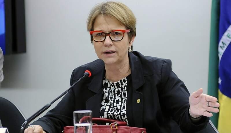 Deputada já faz planos político fora do PSB (Foto: Agência Câmara)