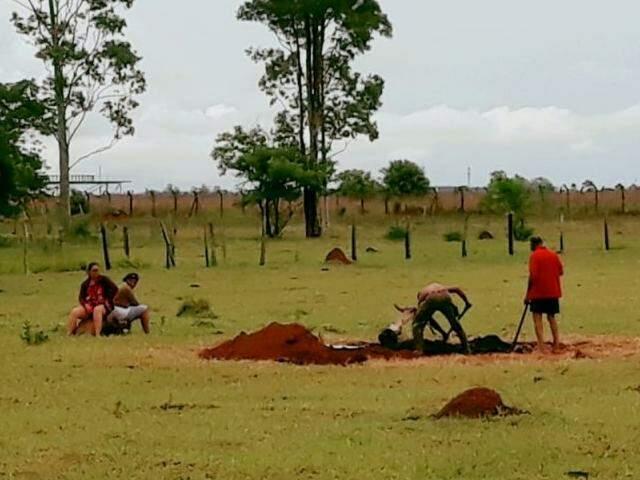 ... e, na sequência, alguns dos restos do animal foram enterrados no local. (Fotos: Direto das Ruas)