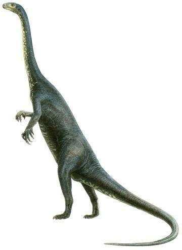 Dinossauros: curto tempo de domínio