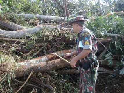 Fazendeiro é multado em R$ 85 mil por fazer 3 desmatamentos simultâneos