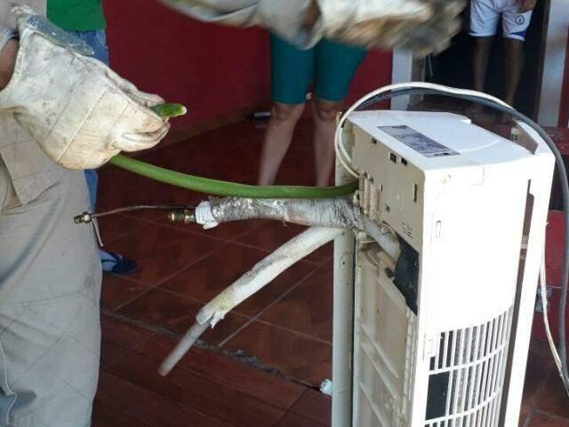 Bombeiro retira cobra que se escondeu dentro de ar condicionado na última quarta-feira em Corumbá (Foto: divulgação)