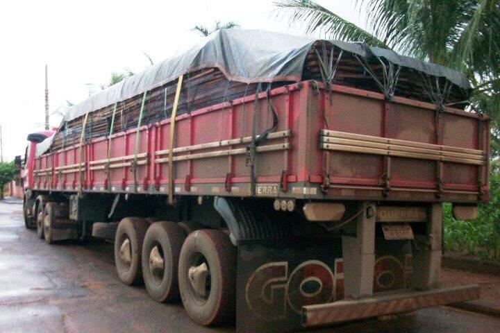 Foram apreendidas 38,4m³ de madeira. (Foto: divulgação)