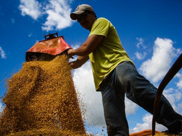 Setor primário, responsável pela extração de recursos naturais, onde se encaixa a agricultura, teve menos substituição de trabalhadores entre março e abril (Foto: Marcos Ermínio)