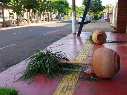 Vândalos espalham lixo e destroem plantas perto de lanchonete em Dourados