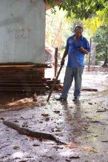 Jiboia de 1,5 metro aparece em rua e vira atração no Jardim Canguru