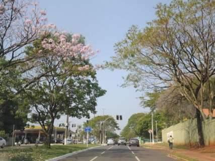 Calorão dá trégua no fim de semana com previsão de chuva em MS