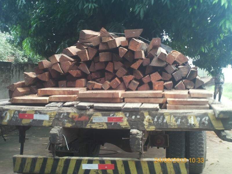 Madeira em três caminhões e a motosserra foi apreendida (Foto: Divulgação)