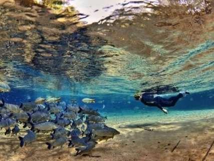 Pela15ª vez, Bonito é eleito o melhor destino de ecoturismo do Brasil
