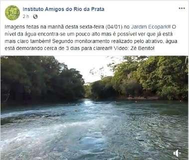 Em alta temporada, Rio da Prata volta a ficar turvo e impede mergulhos
