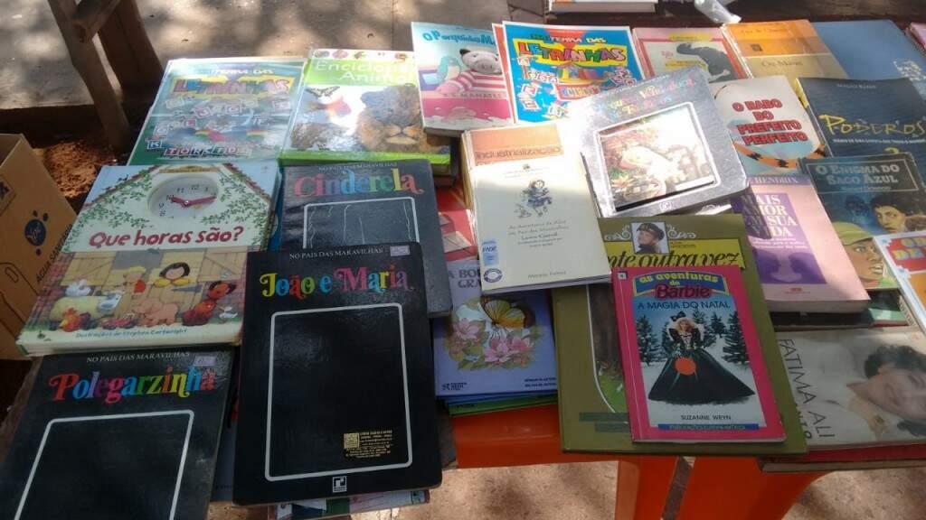 Vários livros estão expostos para a população (Foto: Arquivo  pessoal)