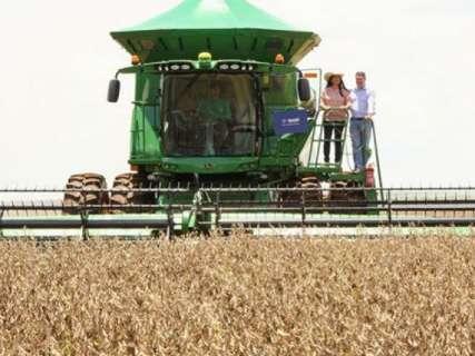 Conab confirma produção de 18,9 milhões de toneladas de grãos em MS