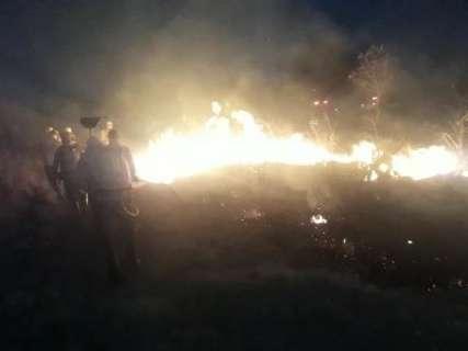 Ibama autoriza contratação de reforço para combate à queimadas em MS
