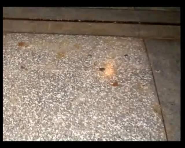 Acadêmicos reclamam de fezes espalhadas no chão da Universidade.