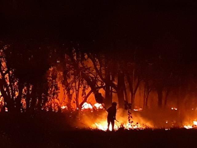 Bombeira usa abafador para combater incêndio em terreno na Avenida do Poeta. (Foto: Humberto Marques)
