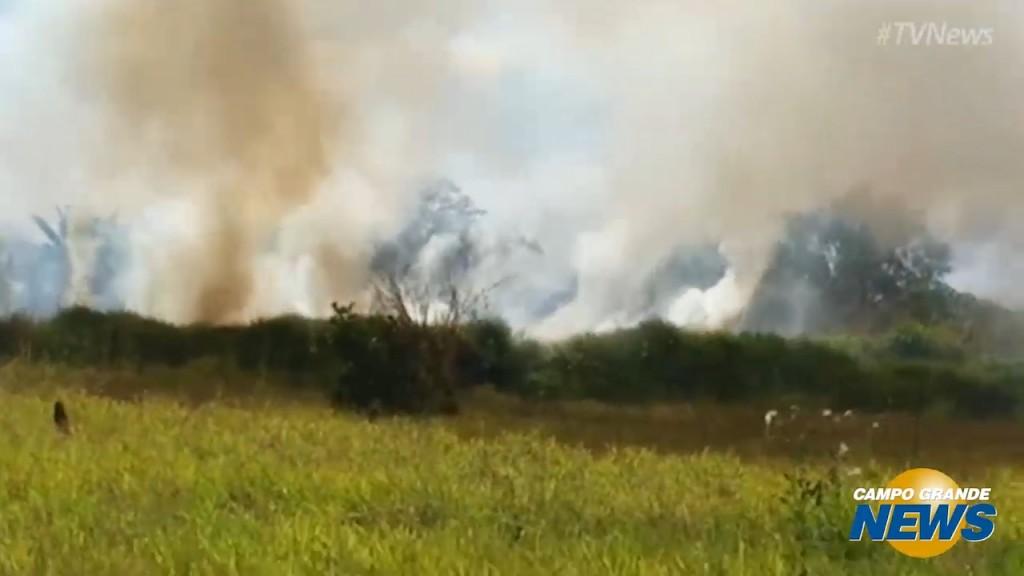Com umidade muito baixa, bombeiros alertam sobre risco das queimadas urbanas