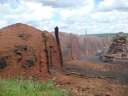 PMA fecha 3 carvoarias ilegais em municípios próximos de Campo Grande