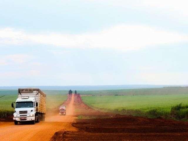 Em 2 artigos, decreto reabre debate sobre leis para proteção do Pantanal