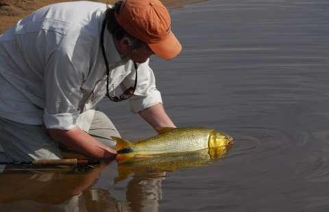 """Com pesque e solte, Mato Grosso do Sul quer """"fisgar"""" turista para voltar sempre"""