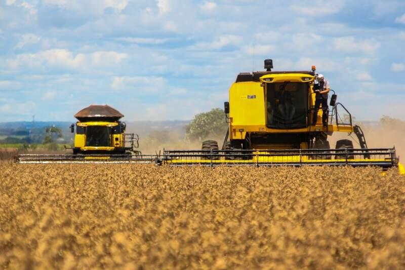 Lavouras de soja devem ampliar o espaço em cerca de 5,6% em relação à safra passada (Foto: Marcos Ermínio)