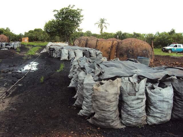 Moraes recebeu multa de R$ 30 mil. As atividades no local foram interditadas. A PMA apreendeu 15 metros cúbicos de lenha nativa e 129 metros cúbicos de carvão vegetal nativo.