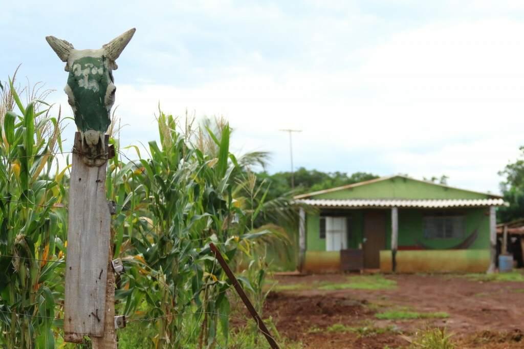 Região tem predomínio de chácaras, com cultivo e milho e mandioca. (Foto: André Bittar)