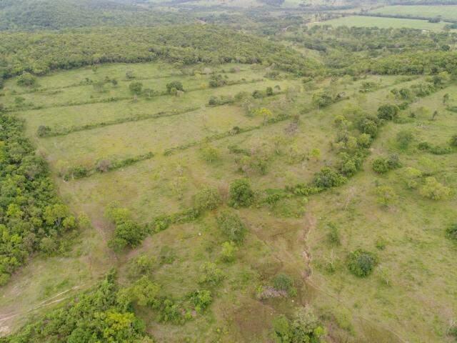 Ainda nesta semana, a PMA flagrou durante vistoria a uma propriedade rural de Nioaque, durante a Operação Cervo do Pantanal. (Foto: PMA)