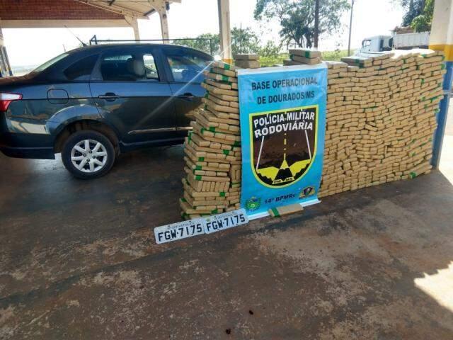 Droga apreendida pela polícia (Foto: PMR)