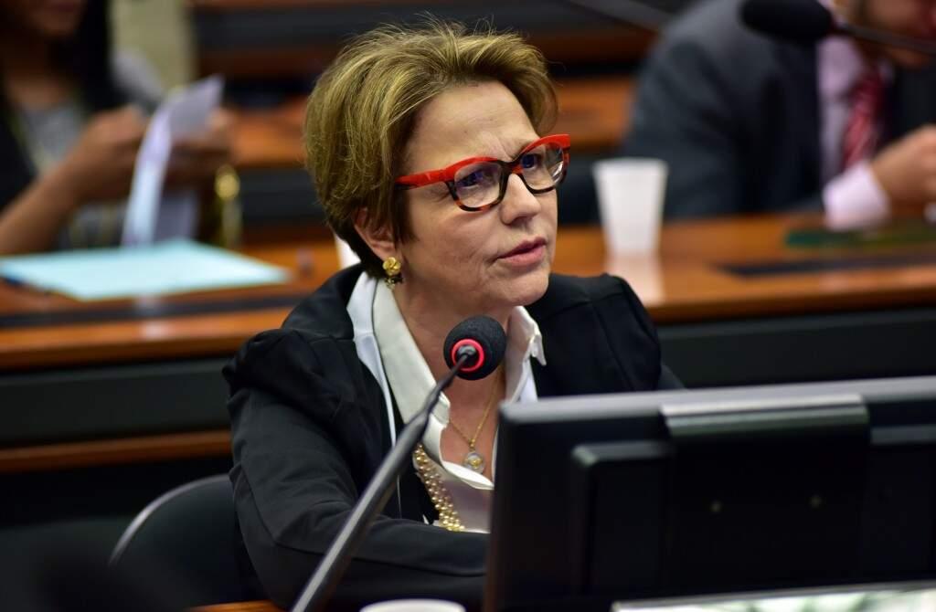 Deputada durante sessão (Foto: Zeca Ribeiro/Câmara dos Deputados)