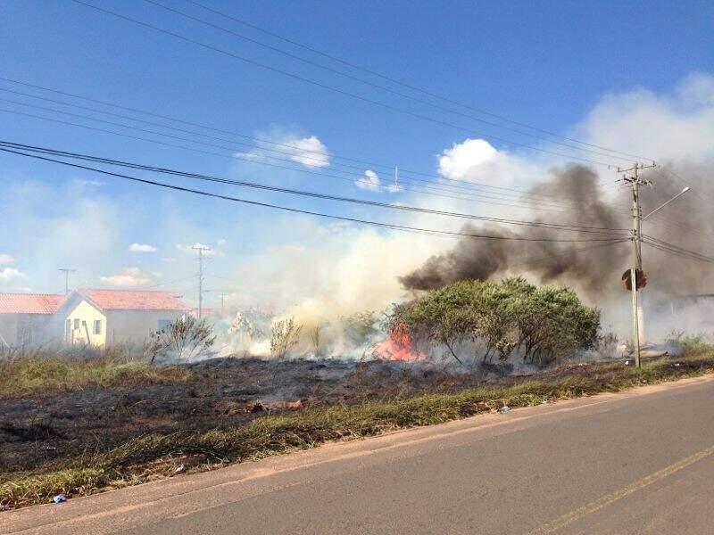 Fogo começou ainda na manhã deste domingo, no bairro Oscar Salazar. (Foto: Alex de Oliveira)