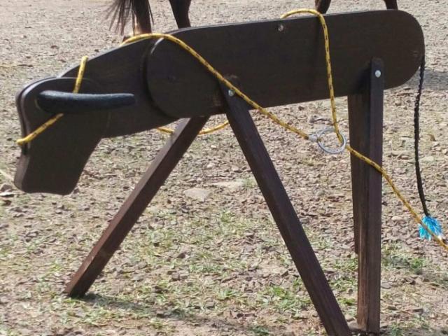 Estrutura de madeira que imita um boi ou cavalete é laçada por competidores. (Foto: Reprodução/Internet)