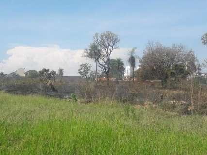 Incêndio em terreno chama atenção de moradores pela altura da fumaça