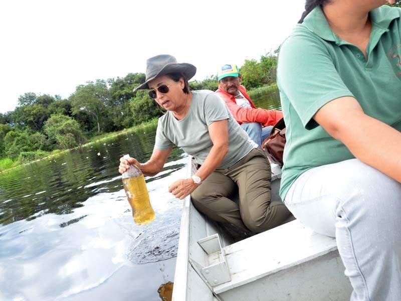 Produtora rural colhe amostra de água do Rio Negro. (Foto: O Pantaneiro)