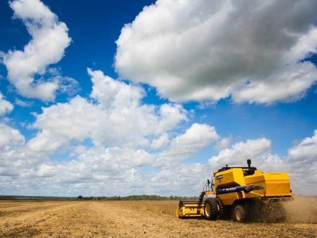 Colheita de soja em MS (Foto: Arquivo/Campo Grande News)