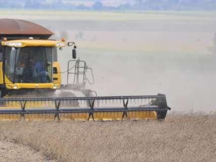 Agricultura se destaca em MS e valor de produção soma R$ 28,8 bilhões